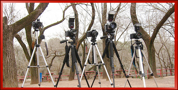 Group of Tripods
